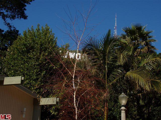 Hollywood Sign.jpgmls.jpg.eb.jpg2